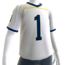 Michigan White Football Jersey