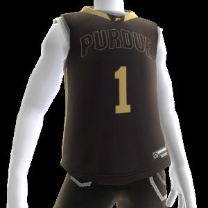 Artículo de avatar de Purdue