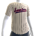 Washington Senators Jersey