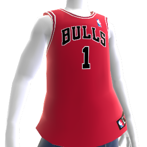 Chicago Bulls NBA 2K13 Jersey