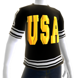 Epic Tshirt USA Blk Wht Gold Chrome