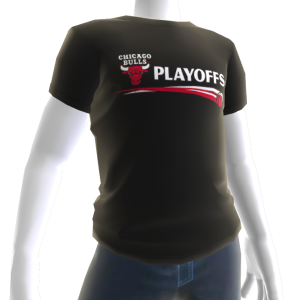 Bulls Playoffs Tee