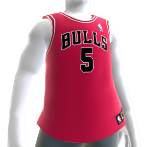 Chicago Bulls NBA2K11 Jersey 