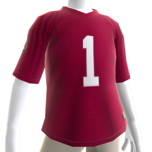 South Carolina Football Jersey