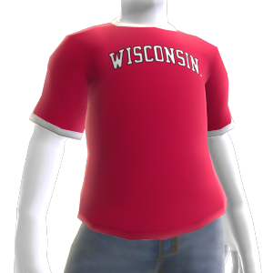 Wisconsin T-Shirt