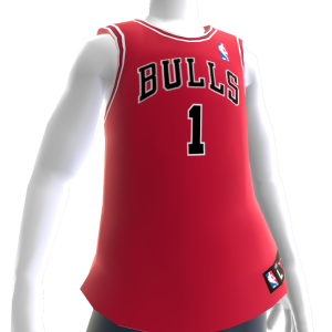 Chicago Bulls NBA 2K14 Jersey