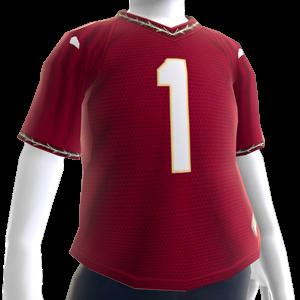 Florida State Football Jersey