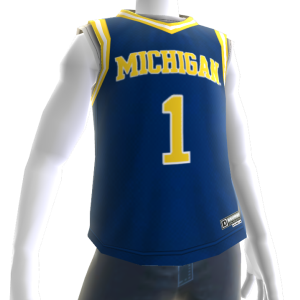 Michigan Basketball Jersey
