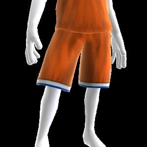 Knicks Pride Shorts