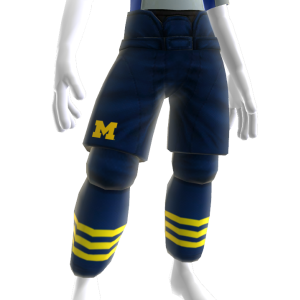 Michigan Hockey Pants
