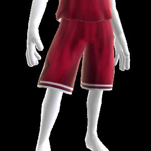 1984-1985 Bulls Shorts