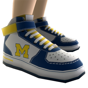 Michigan High Top Shoes
