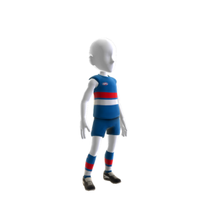 Western Bulldogs Kit