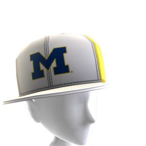Michigan Tilted Panel Cap