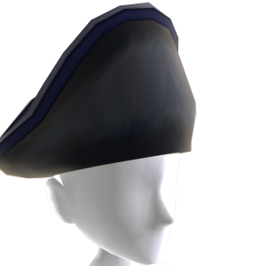 Blue Coat Hat