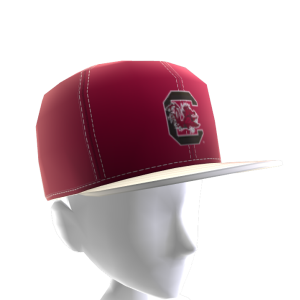 South Carolina FlexFit Cap