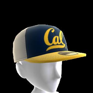 2017 California Cap