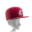 Washington State FlexFit Cap