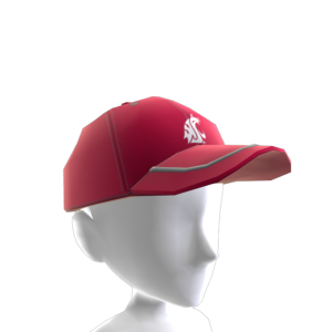 Washington State Baseball Cap