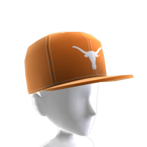 Texas FlexFit Cap