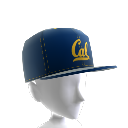 Cal FlexFit Cap