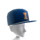 Illinois FlexFit Cap