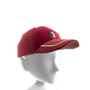 Florida State Baseball Cap