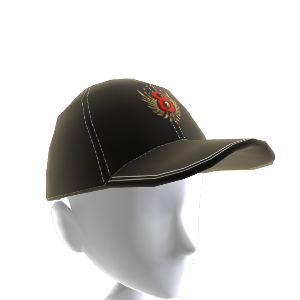 Section 8 Logo Hat 