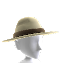 Park Ranger Hat