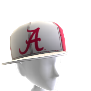 Alabama Tilted Panel Cap