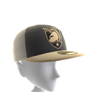 2017 Army Cap