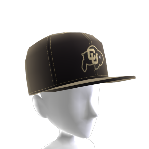 Colorado FlexFit Cap