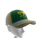 Dallas Stars FlexFit Cap