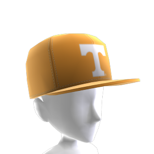 Tennessee FlexFit Cap