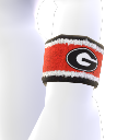 Georgia Wristband