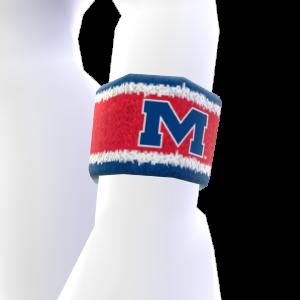 Mississippi Wristband