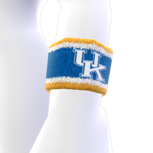 Kentucky Wristband