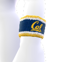 Cal Wristband
