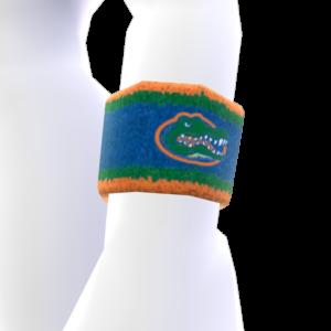 Florida Wristband