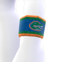 Florida Wristband