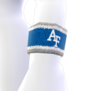 Air Force Wristband