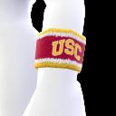 USC élément d'Avatar