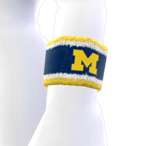 Michigan Wristband
