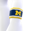Michigan Avatar-Element