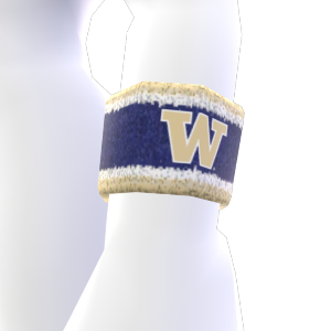 Washington Wristband