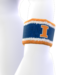 Illinois Wristband