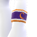 Clemson Wristband