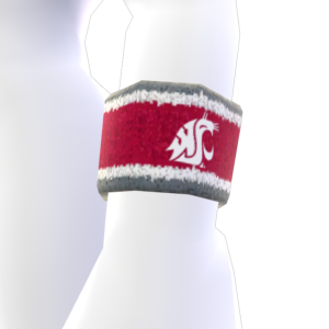 Washington State Wristband