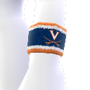 Virginia Wristband
