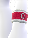 Ohio State Wristband